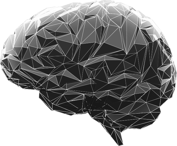 Digital Leader Brain Overlay